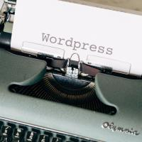 Why You Should Host a Wordpress Blog on Your Own Domain